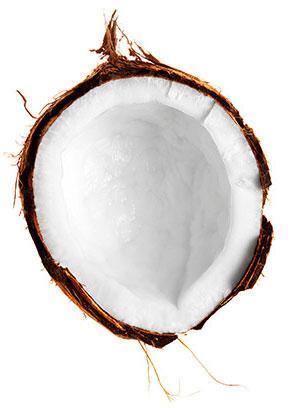 Samoan Coconut Oil
